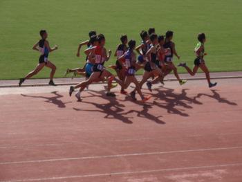 平成28年度群馬県中学総合体育陸上競技大会