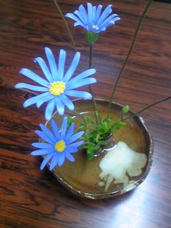 〜花〜華〜hana〜(^^)