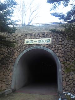 決まったよ〜(^0^)/