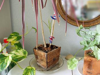 折れた茎から出てきた新芽