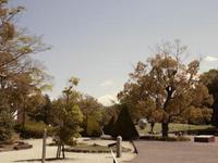 芸術の森公園散策