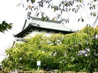 弘前公園散策。。。