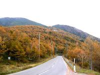 高峰高原の紅葉。。。♪
