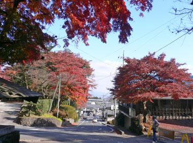 紅葉の「水沢寺」散策