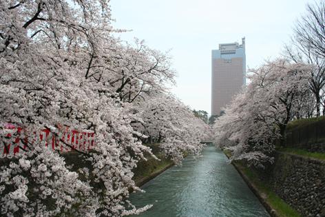 春の訪れ・・・わが、ふるさと前橋!