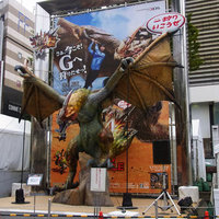 お散歩写真 昨日は新宿で研修