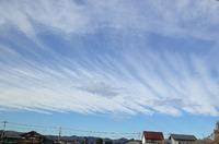 最近の雲♪