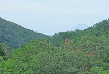 赤城山のツツジと富士山 ♪