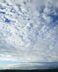 今朝の雲♪
