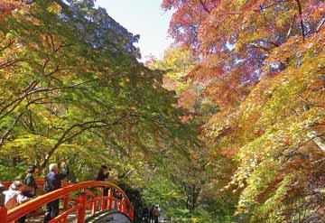 伊香保温泉の紅葉 ♪