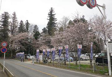 咲前神社「太々神楽200年祭」 ♪