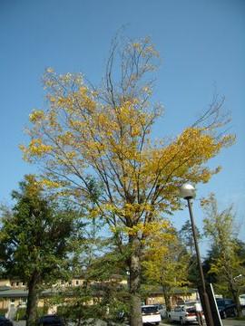 秋を感じる一日でした。