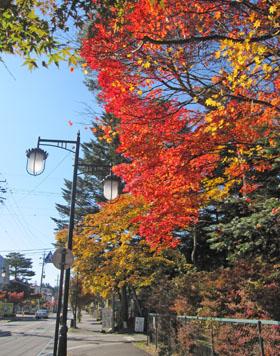 秋色の軽井沢(雲場池) ♪