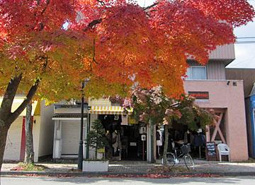 秋色の軽井沢(旧軽エリア) ♪