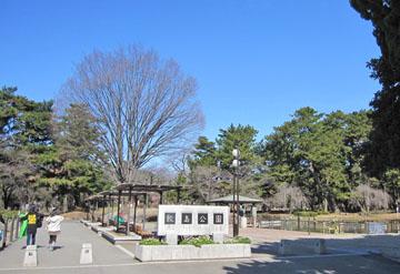敷島公園さんぽ ♪