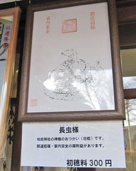咲前神社の白ヘビさん ♪