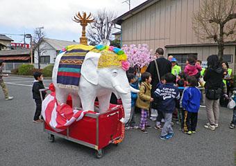板鼻の「花まつり・白象パレード」 ♪