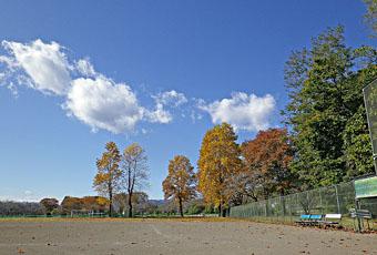 運動公園の秋 ♪