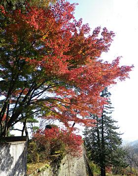 妙義神社の紅葉 ♪