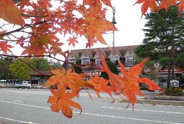 秋の軽井沢 ♪