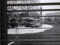 雪の日のランチ