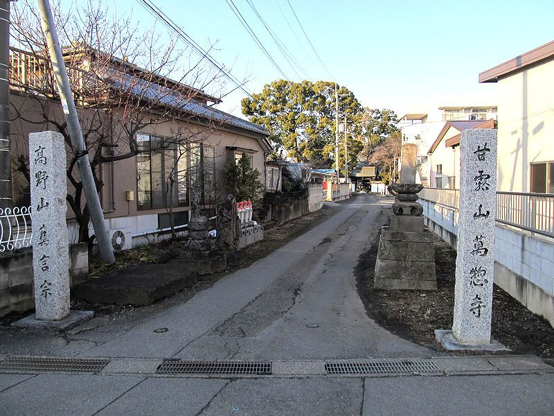 駅から遠足 観音山(62)