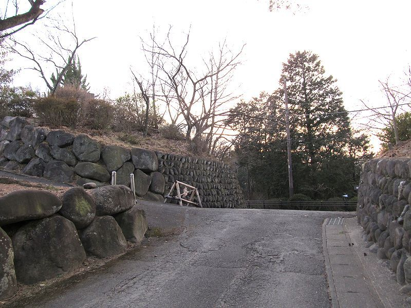 駅から遠足 観音山(65)