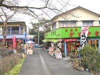 駅から遠足 観音山(68)