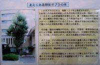 東北ぶらり旅 遠野編(5)