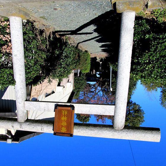 鎌倉街道探訪記(16)