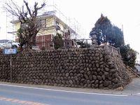鎌倉街道探訪記(19)