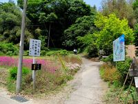 鎌倉街道探訪記(32)