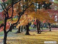 上田城を見てきました(1)