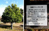 続・鎌倉街道探訪記(1)
