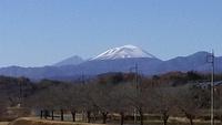 浅間山冠雪。散歩道の景色。