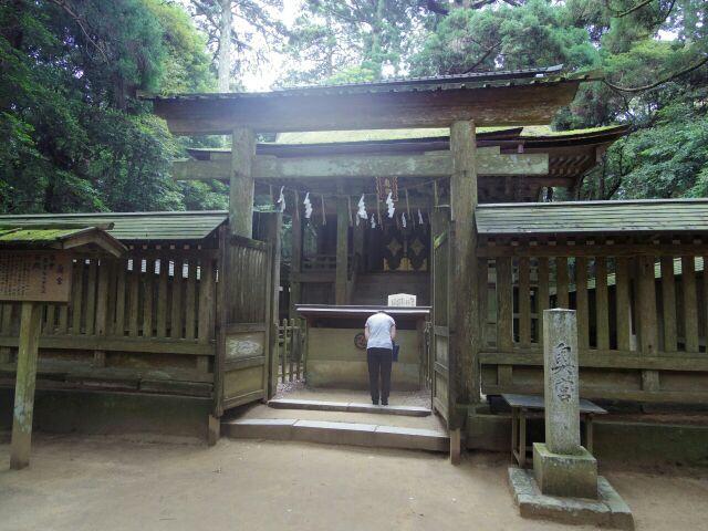 ☆鹿島神宮 夏越の大祓準備☆