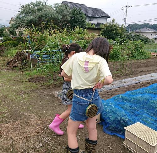 『お芋掘り☆末娘』
