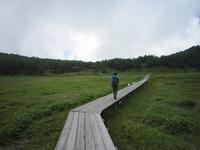 池の平湿原~東篭ノ登山 1