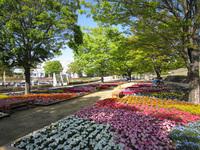 花と緑のぐんまづくり 2017 in 富岡・安中