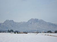今日の妙義山