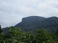 荒船山とトリカブト