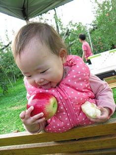 りんご狩りin沼田