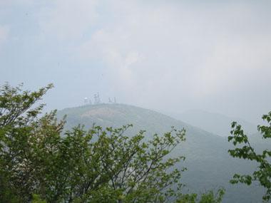 シロヤシオを見つけに荒山へ