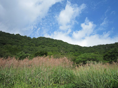 涼を求めて赤城山へ 2