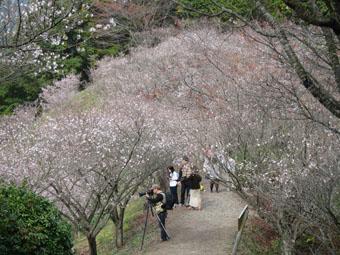 桜山公園・とっちゃなげ汁