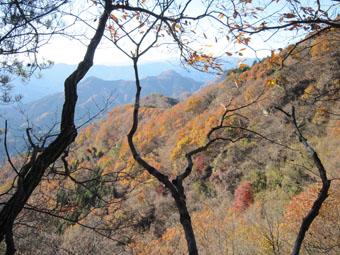 鹿岳(一ノ岳)の紅葉