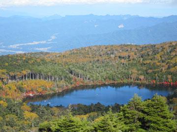 白駒池~高見石へ