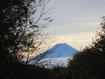 瑞牆山(みずがきやま)の山歩き 2