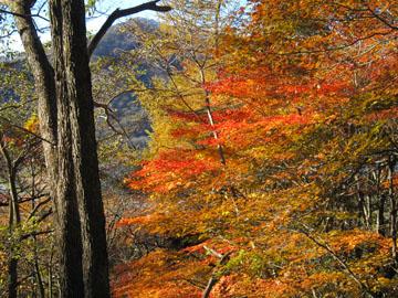 榛名山のハイキング 1