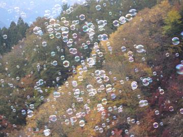 上野村・スカイブリッジと紅葉